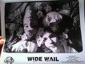 Wide Wail image