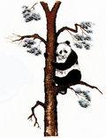 Fierce Panda Records image