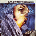 A.M. Pleasure Assassins image