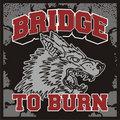 Bridge to burn image
