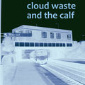 Cloud Waste and the Calf image