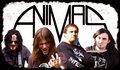 Animas image