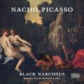 Nacho Picasso image