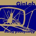 GinLab image