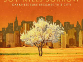 Darkness Sure Becomes This City (CD)
