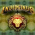 Indidginus image