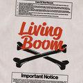 Living Boom image