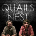 Quails in the Nest image
