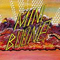 Miniboone image