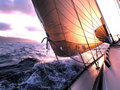 Newport Sailing Club image