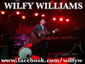 Wilfy Williams image