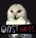 Ghost Hands image