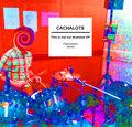 Cachalots image