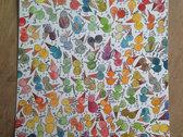 Jaymay - Birds #24