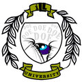 iLL University image