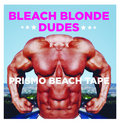 Bleach Blonde Dudes image