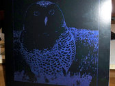 "Owl 12"" LP Nightmare Edition"