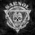 Sarnol image