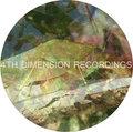 4th Dimension Recordings image