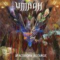 UMBAH image