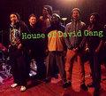 House of David Gang image