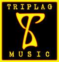 Triplag Music image