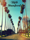 Djib Stanford image