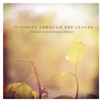 Sunshine through the leaves cover art