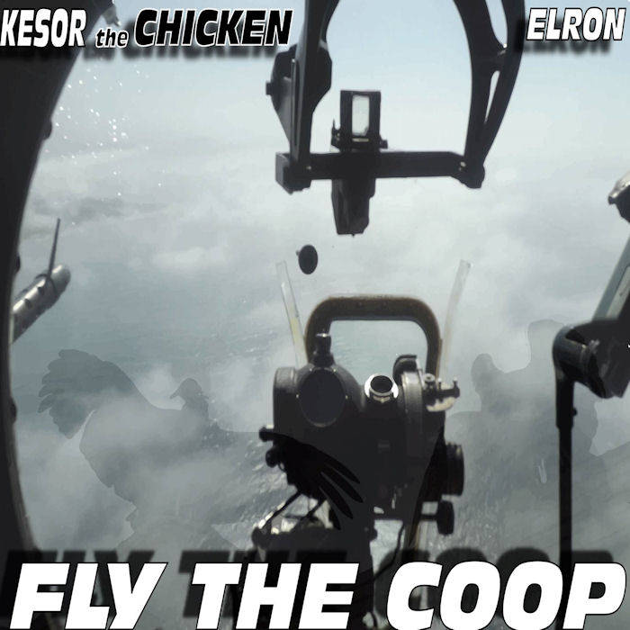 Fly The Coop cover art