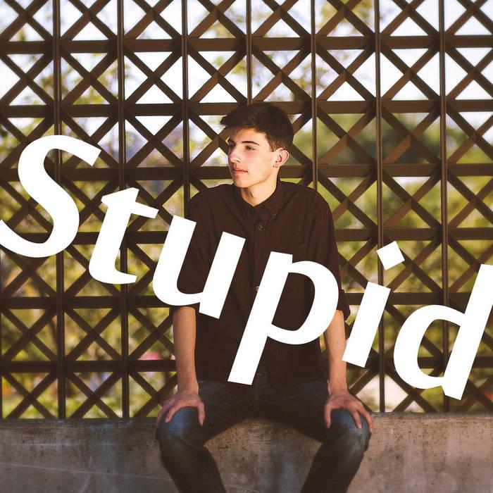 Stupid! cover art
