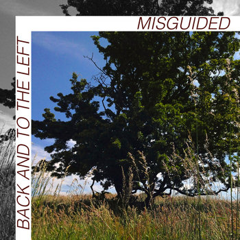 Misguided cover art