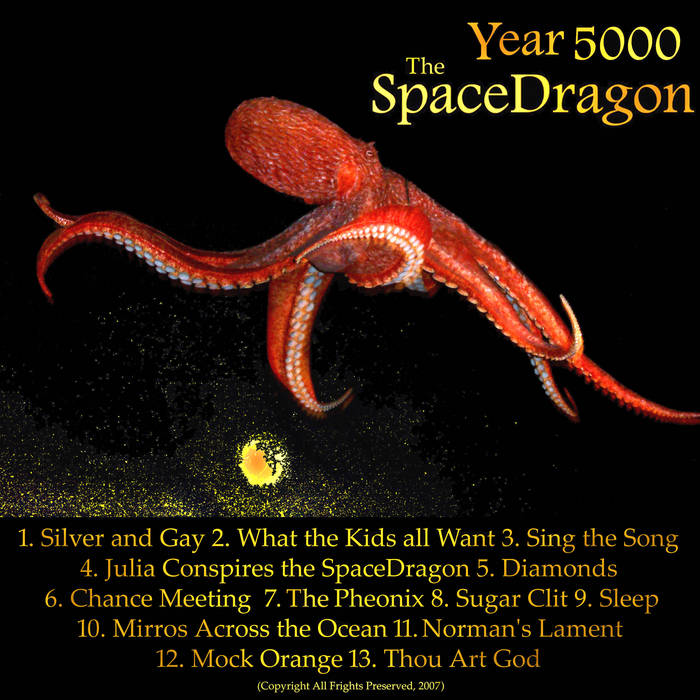 The SpaceDragon cover art