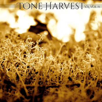 Tone Harvest V.A. Vol #1 cover art