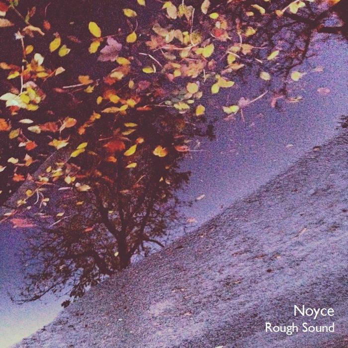 Rough Sound cover art