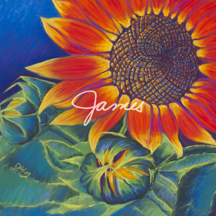 James cover art