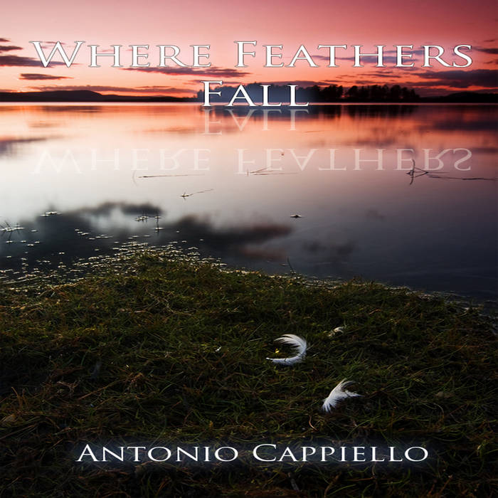 Where Feathers Fall cover art