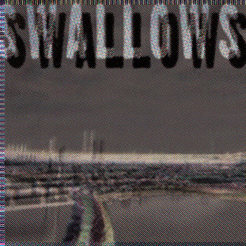 Swallows cover art