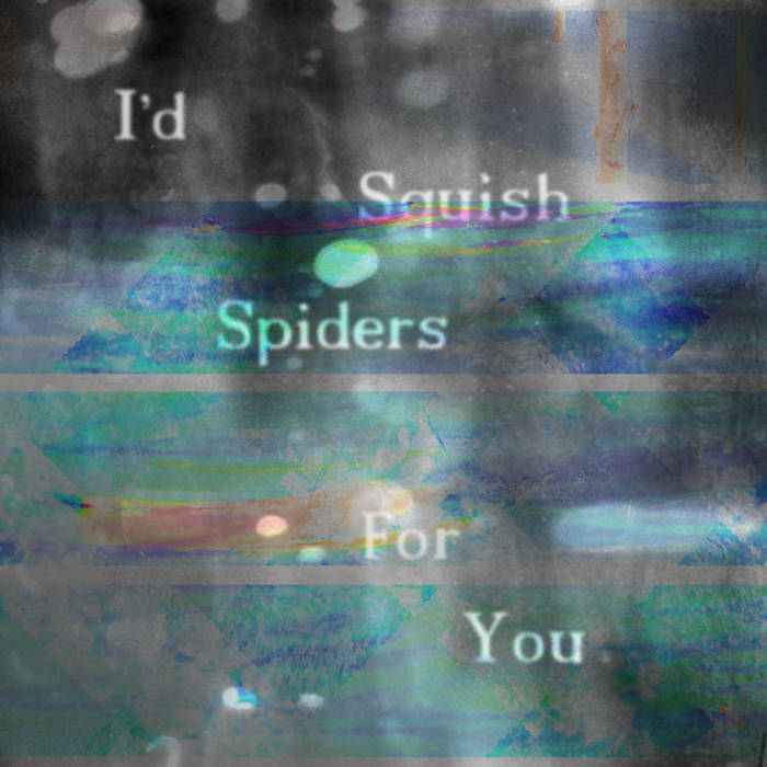 I'd Squish Spiders for You cover art