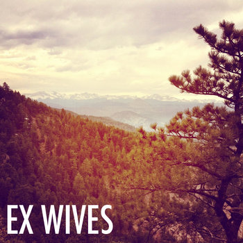 Ex Wives cover art