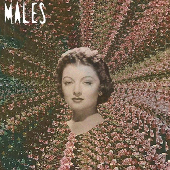 Run Run Run/MalesMalesMales cover art