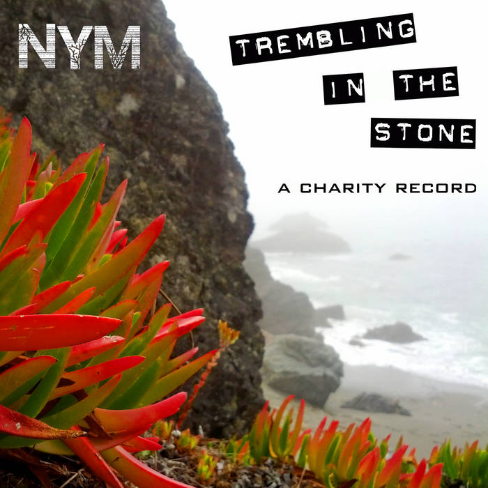 Trembling in the Stone - a charity  record cover art