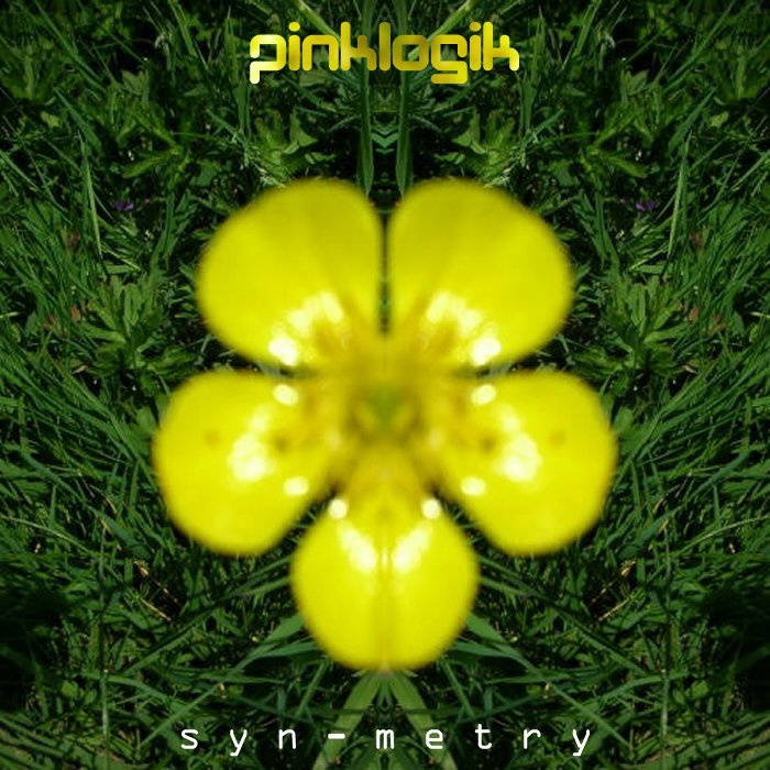 Syn-Metry cover art