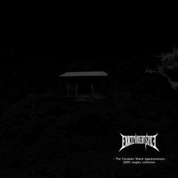 The Forsaken Wierd Aggressiveness - 2005 singles collection - cover art
