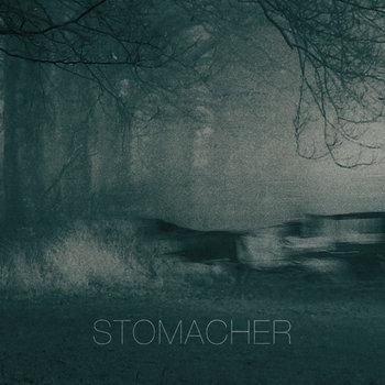 Stomacher cover art