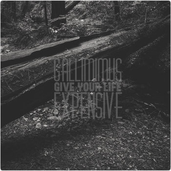 Give Your Life Expensive cover art