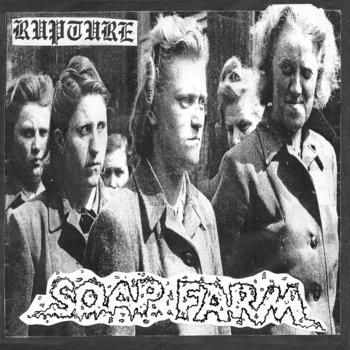 Soap Farm / Das Waffen SS cover art