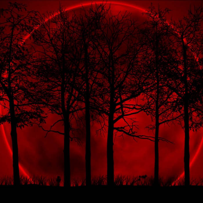 Rites of the Blood Moon Rehearsal cover art