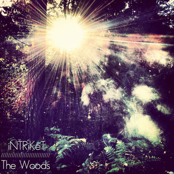 The Woods cover art