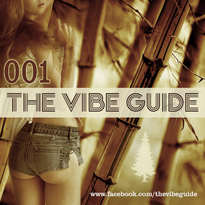 THE VIBE GUIDE Vol. 1 cover art