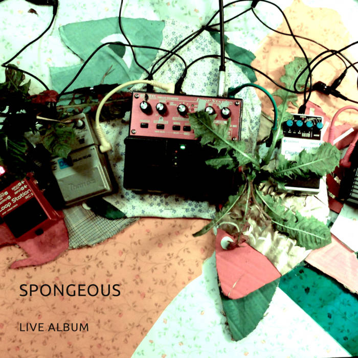 Spongeous cover art